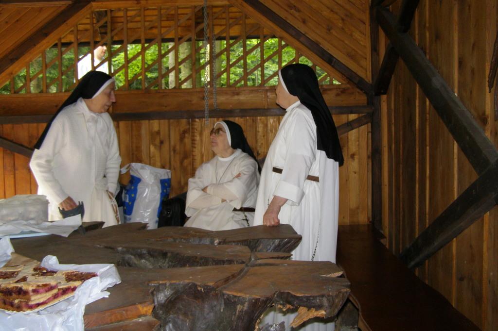 Posvet sester dominikank
