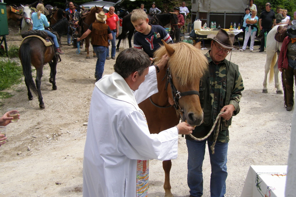 Blagoslov konjev in konjenikov